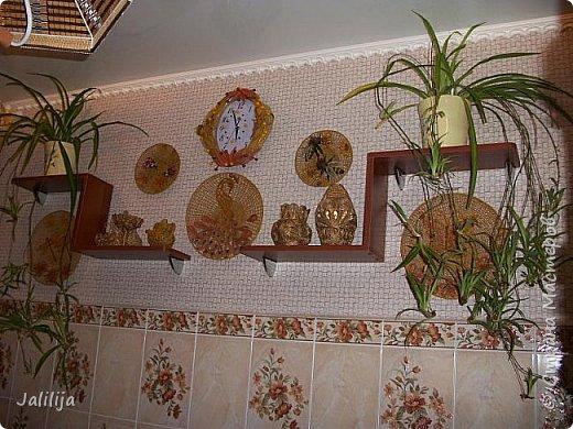 Здравствуйте! Короткое дополнение к материалу, который я показывала весной. Речь шла о  декорировании кухонной стены. Тогда я посетовала, что не хватает комнатных цветов. За лето  я вырастила для этой кухни хлорофитум, самые кухонные цветы. фото 12