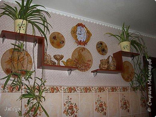 Здравствуйте! Короткое дополнение к материалу, который я показывала весной. Речь шла о  декорировании кухонной стены. Тогда я посетовала, что не хватает комнатных цветов. За лето  я вырастила для этой кухни хлорофитум, самые кухонные цветы. фото 13