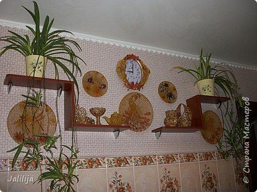 Здравствуйте! Короткое дополнение к материалу, который я показывала весной. Речь шла о  декорировании кухонной стены. Тогда я посетовала, что не хватает комнатных цветов. За лето  я вырастила для этой кухни хлорофитум, самые кухонные цветы. фото 2