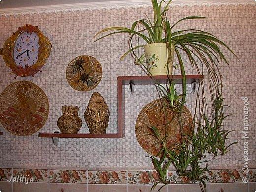 Здравствуйте! Короткое дополнение к материалу, который я показывала весной. Речь шла о  декорировании кухонной стены. Тогда я посетовала, что не хватает комнатных цветов. За лето  я вырастила для этой кухни хлорофитум, самые кухонные цветы. фото 6