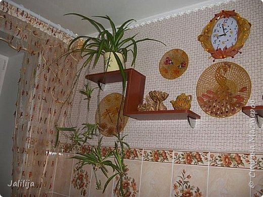 Здравствуйте! Короткое дополнение к материалу, который я показывала весной. Речь шла о  декорировании кухонной стены. Тогда я посетовала, что не хватает комнатных цветов. За лето  я вырастила для этой кухни хлорофитум, самые кухонные цветы. фото 9