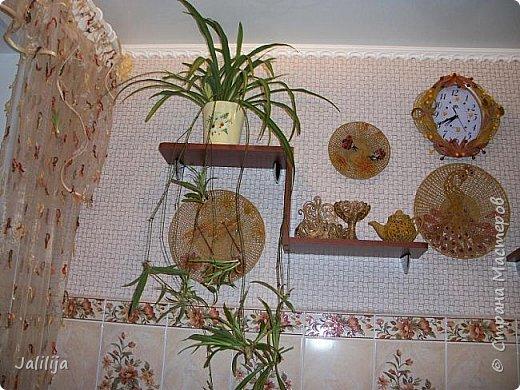 Здравствуйте! Короткое дополнение к материалу, который я показывала весной. Речь шла о  декорировании кухонной стены. Тогда я посетовала, что не хватает комнатных цветов. За лето  я вырастила для этой кухни хлорофитум, самые кухонные цветы. фото 10