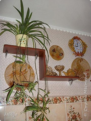 Здравствуйте! Короткое дополнение к материалу, который я показывала весной. Речь шла о  декорировании кухонной стены. Тогда я посетовала, что не хватает комнатных цветов. За лето  я вырастила для этой кухни хлорофитум, самые кухонные цветы. фото 11
