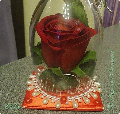 Роза в бокале фото 3