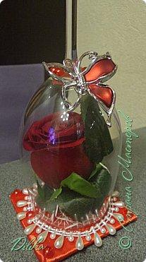 Роза в бокале фото 5
