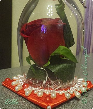 Роза в бокале фото 7
