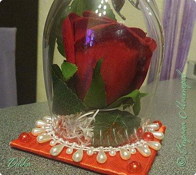 Роза в бокале фото 8