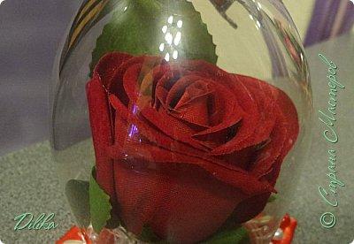 Роза в бокале фото 9