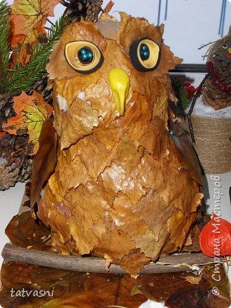 Такую сову мы сделали с внуком для выставки.  фото 8
