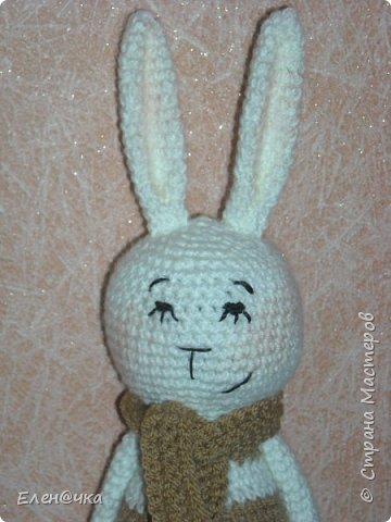 Заяц на зиму линяет, Шубку белу одевает.... фото 1