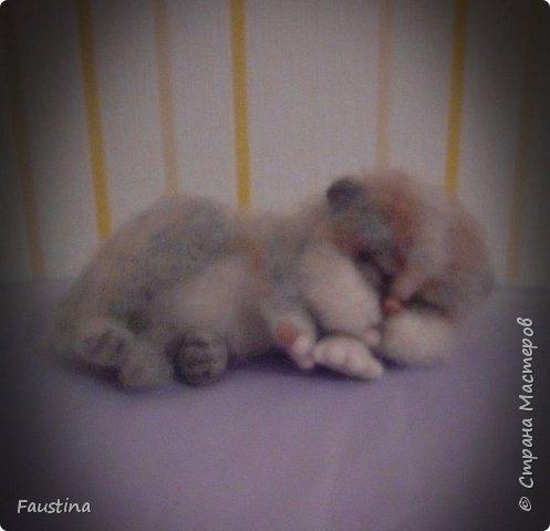 Спящая кошечка Сплюшка. Материал Новозеландский кардочес,Семеновкая шерть,тонировка сухой пастелью.  фото 2