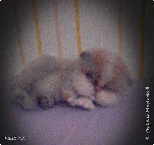 Спящая кошечка Сплюшка. Материал Новозеландский кардочес,Семеновкая шерть,тонировка сухой пастелью.  фото 1