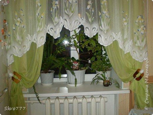 Окно в кухне. Подхваты- пряжка из картона с фольгой,штора зафиксирована обычной одноразовой ложкой Прикольно и в кухонном стиле фото 1