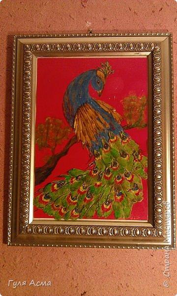 """Изображение птицы нарисовали на бумаге и приклеили на цветной картон. Разукрашивали гуашью.  Для крыльев и хвоста использованы кленовые """"сережки"""". фото 1"""