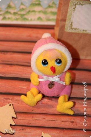 У моей сиреневой курицы родились вполне себе обычные цыплята))  фото 6