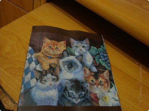Вот такая кошачья компания теперь живет на одной из моих тетрадок) Лаком не покрывала, так как постоянно использую фото 1