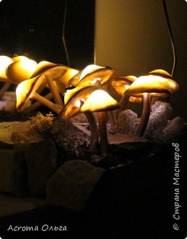 Сегодня хочу поделиться вот таким ночничком. Поганки слеплены из полимерной глины, внутри спрятаны светодиоды. Можно сказать, что это коллективное творчество: электрическую начинку паяли вместе с мужем, камушки собирали с дочкой, ягель настоящий привезла мне подруга из-за полярного круга. Сбоку на подставке установлен датчик освещенности, в темноте грибы начинают светиться и мерцать фото 9