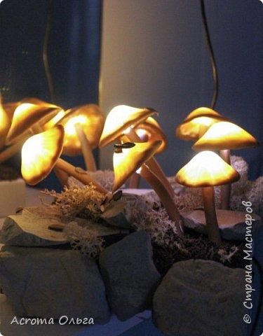 Сегодня хочу поделиться вот таким ночничком. Поганки слеплены из полимерной глины, внутри спрятаны светодиоды. Можно сказать, что это коллективное творчество: электрическую начинку паяли вместе с мужем, камушки собирали с дочкой, ягель настоящий привезла мне подруга из-за полярного круга. Сбоку на подставке установлен датчик освещенности, в темноте грибы начинают светиться и мерцать фото 1