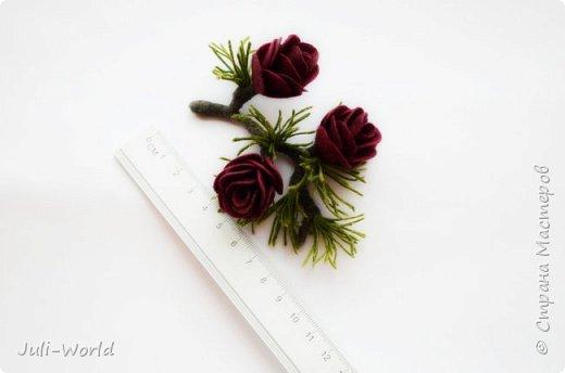 Полярная роза фото 4