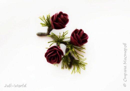 Полярная роза фото 2