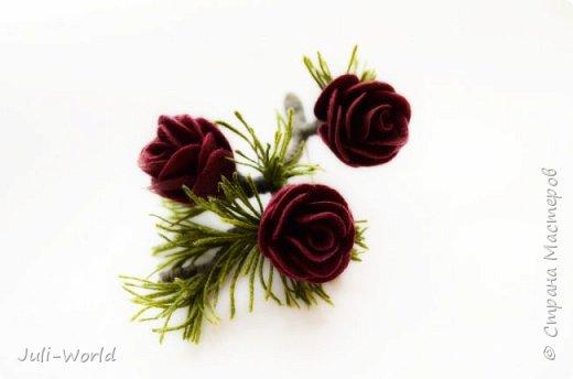 Полярная роза фото 3