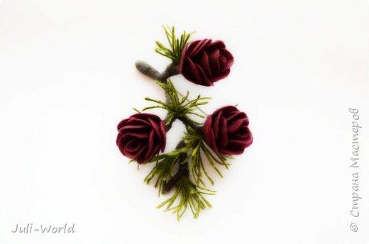 Полярная роза фото 1