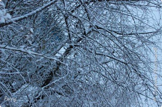Эх,вот и наступила долгожданная зима!!! Снег застал врасплох...после дождей и слякоти наступила самая настоящая сказка)))) фото 8