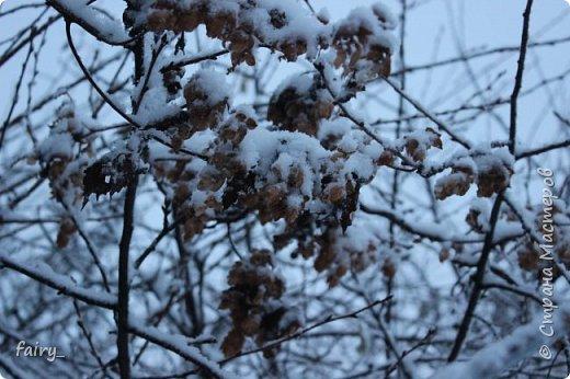 Эх,вот и наступила долгожданная зима!!! Снег застал врасплох...после дождей и слякоти наступила самая настоящая сказка)))) фото 9