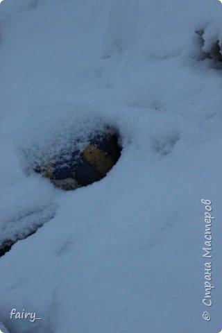 Эх,вот и наступила долгожданная зима!!! Снег застал врасплох...после дождей и слякоти наступила самая настоящая сказка)))) фото 2