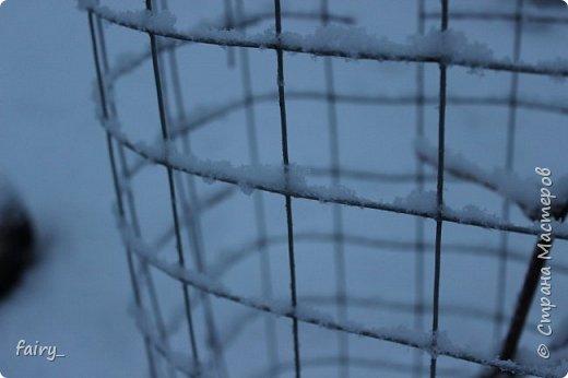 Эх,вот и наступила долгожданная зима!!! Снег застал врасплох...после дождей и слякоти наступила самая настоящая сказка)))) фото 14