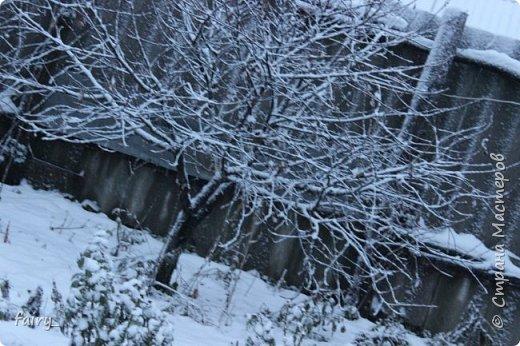 Эх,вот и наступила долгожданная зима!!! Снег застал врасплох...после дождей и слякоти наступила самая настоящая сказка)))) фото 1