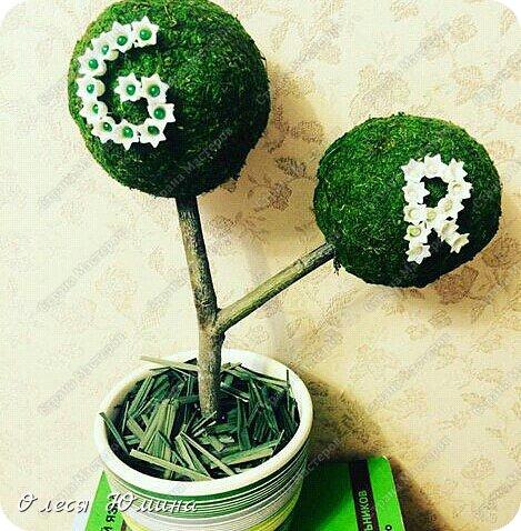 """Здравствуйте! Хочу поделиться своей идеей топиария. Я его делала подруге Лизочке на день рождения. PS: GR - это Green Roоm (Зеленая комната). У подруги интерьер в комнате приближен к природе, в нем преобладают в основном зеленые цвета, поэтому решила ей подарить такой оригинальный подарочек. Подруга была очень довольна :)  1. Начнем с материалов: нам понадобится:    -горшок (я его купила в castorama, но чаще всего покупаю в fix-price, там дешевле)     - алебастр или гипс    - палочка в виде рогатки ( желательно натуральную, ее нужно помыть и высушить), палку лучше взять не толстую, среднюю.    - травка сушеная ( или любой сухой материал)    - шарики декоративные из мха (я покупала в леонардо, 6 штук в упаковке, они из натурального мха)    - цветы декоративные """"колокольчики""""    - цветные булавки  фото 1"""