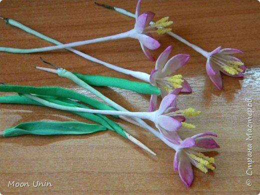 Вот смотрю на работы девочек, лепящих цветы, и тихо таю от восхищения и завидую белой завистью;)   Сколько раз пробовала заняться флористикой (вот здесь, например, лотос лепила http://stranamasterov.ru/node/719182), никогда не была довольна результатом, но... в очередной раз не смогла удержаться)) Так что, отложите свои тапки в сторону и не судите меня строго)))  фото 5
