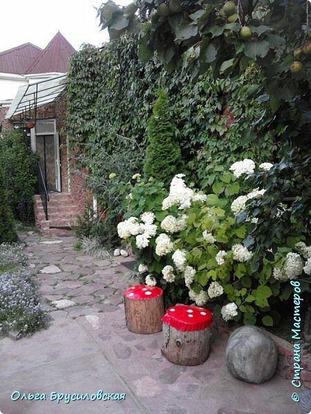 Здравствуй, мой солнечный гостеприимный Кыргызстан!!!  20 лет я не была на Родине... 24 июля 1996 года мы уехали на ПМЖ в Германию... 16 июля 2016 года со старшим сыном и его невестой - девушкой из Швейцарии с русским именем Тамара - мы прилетели в Бишкек!!! фото 6