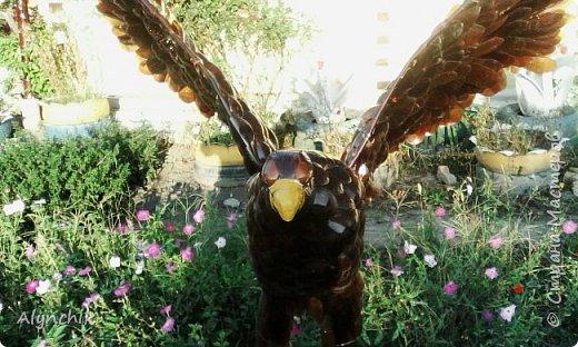 Здравствуйте жители страны мастеров! Хочу поделиться своими работами  на  моем участке. Это орел. Были еще жар -птица и павлин, но я их продала  и не успела сфотографировать. Сейчас делаю русалку и еще одну жар -птицу. Так что когда будут готовы поделюсь с вами своей радостью. фото 3