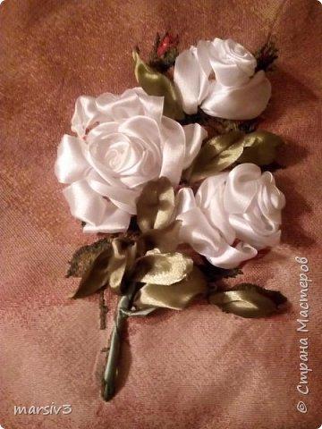Розы цветут и зимой))