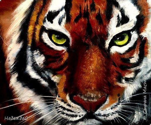 Тигр на заказ В реальности он просто потрясающий фото 1