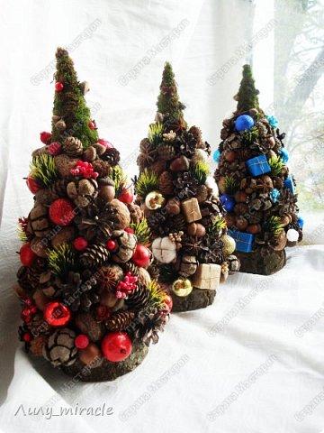 """Долго ко мне не приходило вдохновение на эко-ёлочки, но когда пришло, порадовало результатом работы - три замечательные ёлочки, в основе которых мох, декор из различных шишек, желудей орешков, спилы дерева. Декоративные элементы у всех похожи, но в разных тонах. По сему можно смело сказать - у меня вышла коллекция эко-ёлочек с общим названием """"Огоньки"""".  фото 14"""
