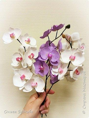 Привет, жители страны)) Наваяла свои первые орхидеи. Приглашаю к просмотру, если что, не судите строго)) фото 2