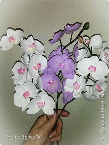 Привет, жители страны)) Наваяла свои первые орхидеи. Приглашаю к просмотру, если что, не судите строго)) фото 3
