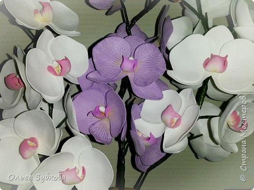Привет, жители страны)) Наваяла свои первые орхидеи. Приглашаю к просмотру, если что, не судите строго)) фото 1