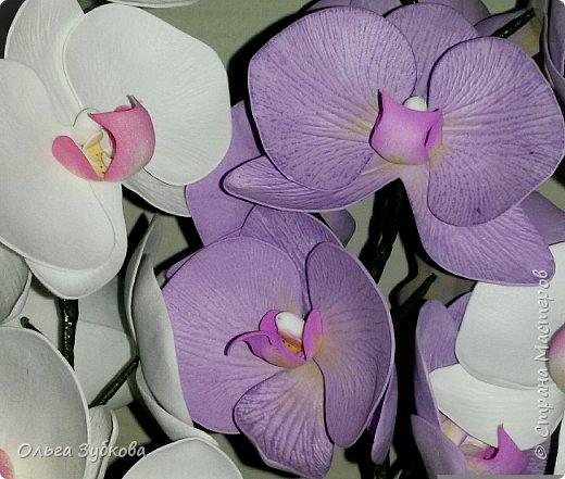 Привет, жители страны)) Наваяла свои первые орхидеи. Приглашаю к просмотру, если что, не судите строго)) фото 4