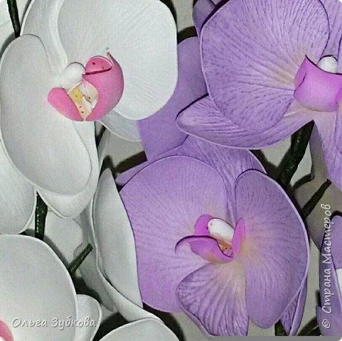 Привет, жители страны)) Наваяла свои первые орхидеи. Приглашаю к просмотру, если что, не судите строго)) фото 5