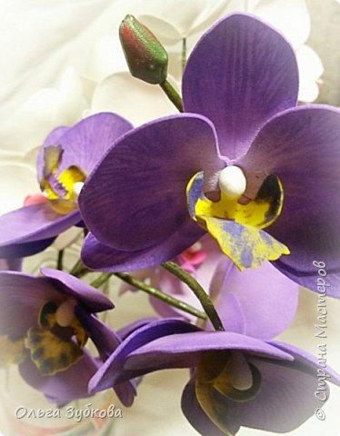 Привет, жители страны)) Наваяла свои первые орхидеи. Приглашаю к просмотру, если что, не судите строго)) фото 6