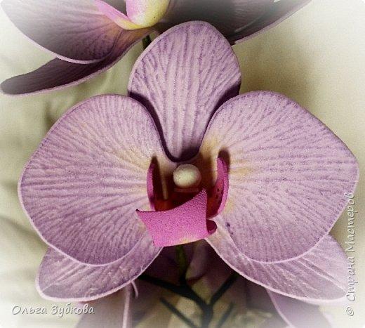 Привет, жители страны)) Наваяла свои первые орхидеи. Приглашаю к просмотру, если что, не судите строго)) фото 7