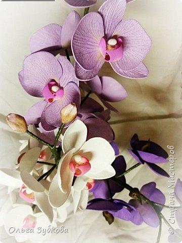 Привет, жители страны)) Наваяла свои первые орхидеи. Приглашаю к просмотру, если что, не судите строго)) фото 8