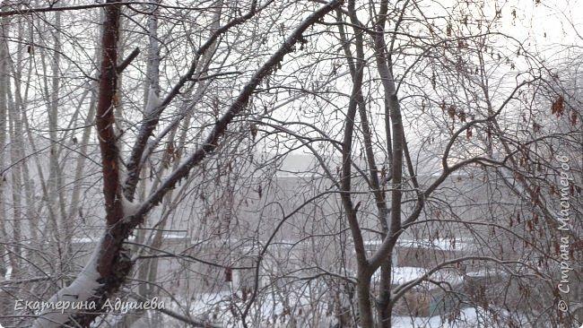 Урал попал в циклон ,морозы немного спали . Пейзажи в центе города сказочные, утром было -23. Не удержалась, чтобы не взять фотоаппарат в руки и не запечатлеть красоту за окном и солнышко в дымке морозной занавеси. Сразу в памяти сплывает добрая сказка  из детства (Морозко-1964 года)   фото 4