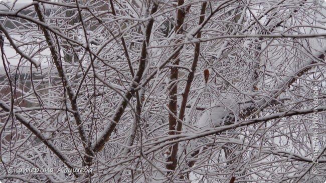 Урал попал в циклон ,морозы немного спали . Пейзажи в центе города сказочные, утром было -23. Не удержалась, чтобы не взять фотоаппарат в руки и не запечатлеть красоту за окном и солнышко в дымке морозной занавеси. Сразу в памяти сплывает добрая сказка  из детства (Морозко-1964 года)   фото 11