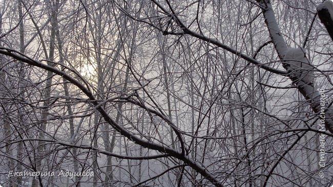 Урал попал в циклон ,морозы немного спали . Пейзажи в центе города сказочные, утром было -23. Не удержалась, чтобы не взять фотоаппарат в руки и не запечатлеть красоту за окном и солнышко в дымке морозной занавеси. Сразу в памяти сплывает добрая сказка  из детства (Морозко-1964 года)   фото 12