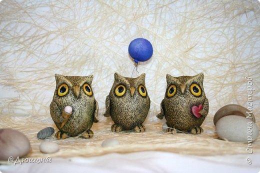У меня пополнение в семействе) вот такие ребятки вылупились из яиц))) , то есть на основе яйца. фото 2